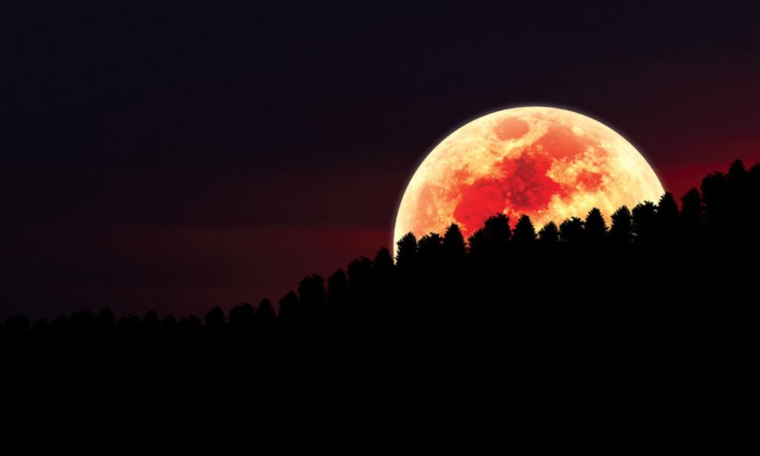 213189__red-moon-over-forest_p
